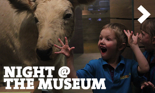 Night @ The Museum Photos
