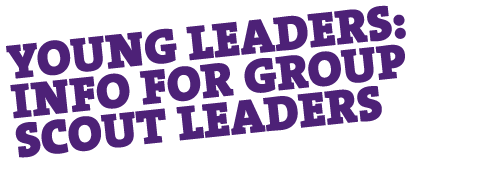 Young Leaders: GSL Guide